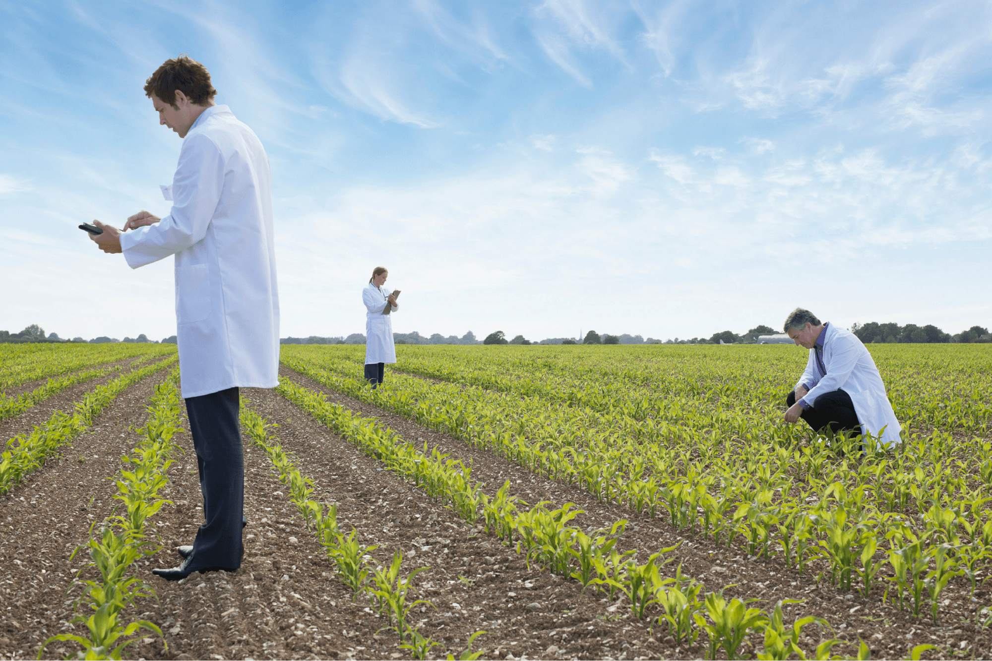 What You Need to Know About the Biotech Revolution in Agriculture ...